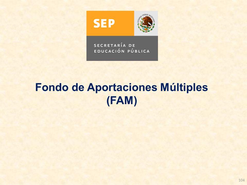104 Fondo de Aportaciones Múltiples (FAM)