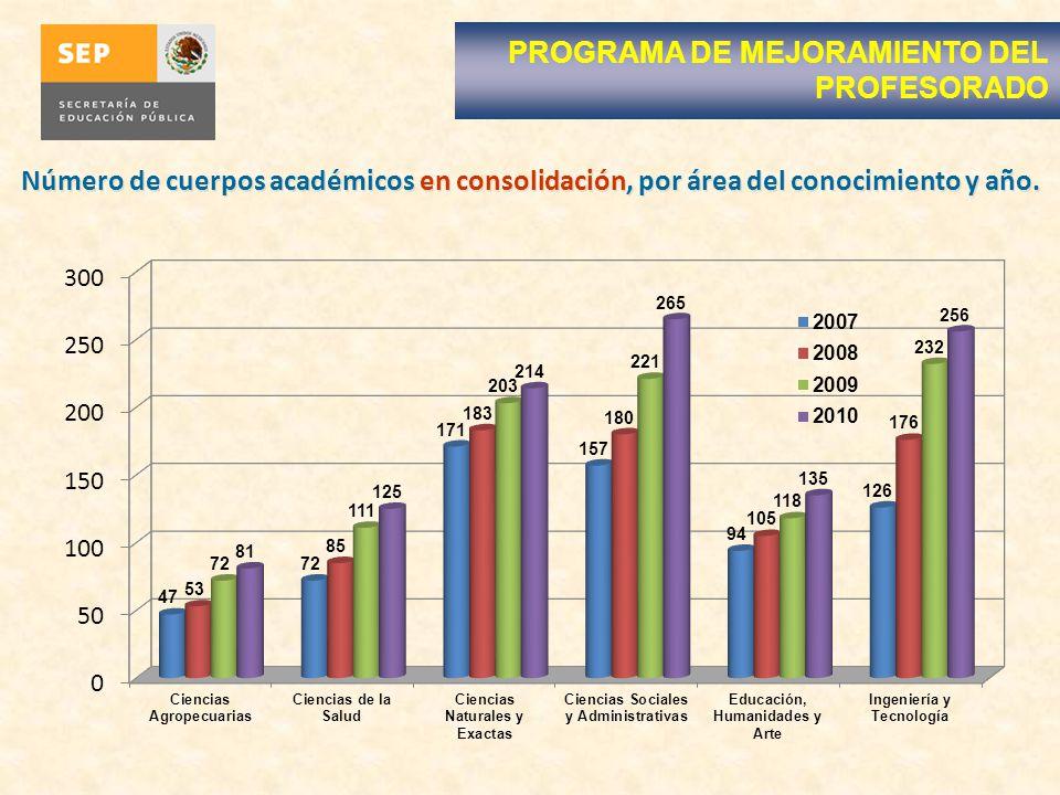 Número de cuerpos académicos en consolidación, por área del conocimiento y año.