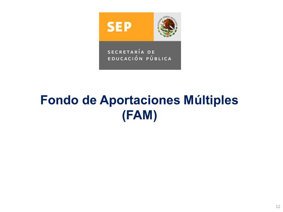 12 Fondo de Aportaciones Múltiples (FAM)