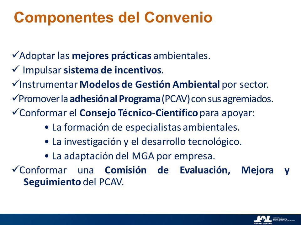 Adoptar las mejores prácticas ambientales. Impulsar sistema de incentivos. Instrumentar Modelos de Gestión Ambiental por sector. Promover la adhesión