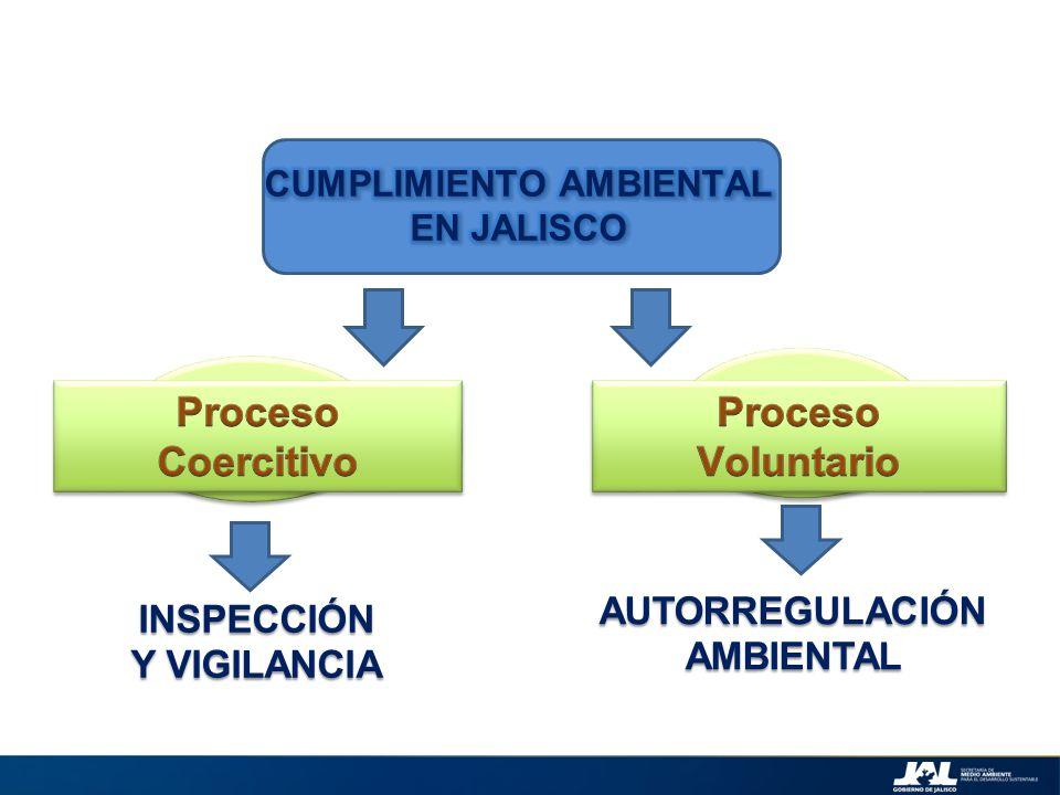 Certificación Ambiental INSPECCIÓN Y VIGILANCIA AUTORREGULACIÓN AMBIENTAL