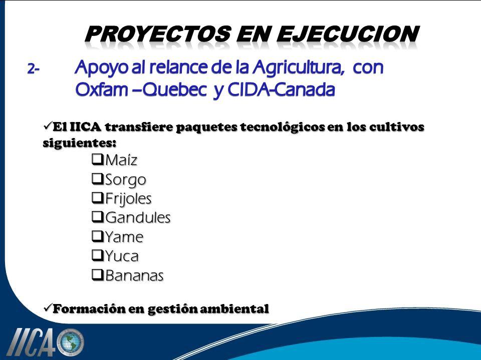 El IICA transfiere paquetes tecnológicos en los cultivos siguientes: El IICA transfiere paquetes tecnológicos en los cultivos siguientes: Maíz Maíz So