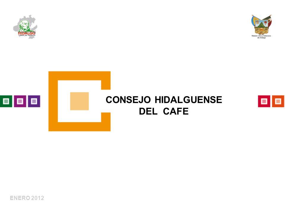 ENERO 2012 CONSEJO HIDALGUENSE DEL CAFE