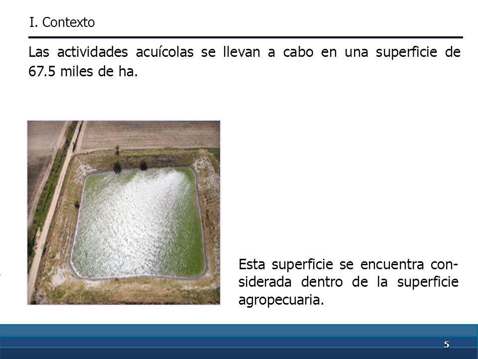 5555 Diseñar indicadores para medir el impacto de las acciones de sa- nidad agropecuaria y acuícola.