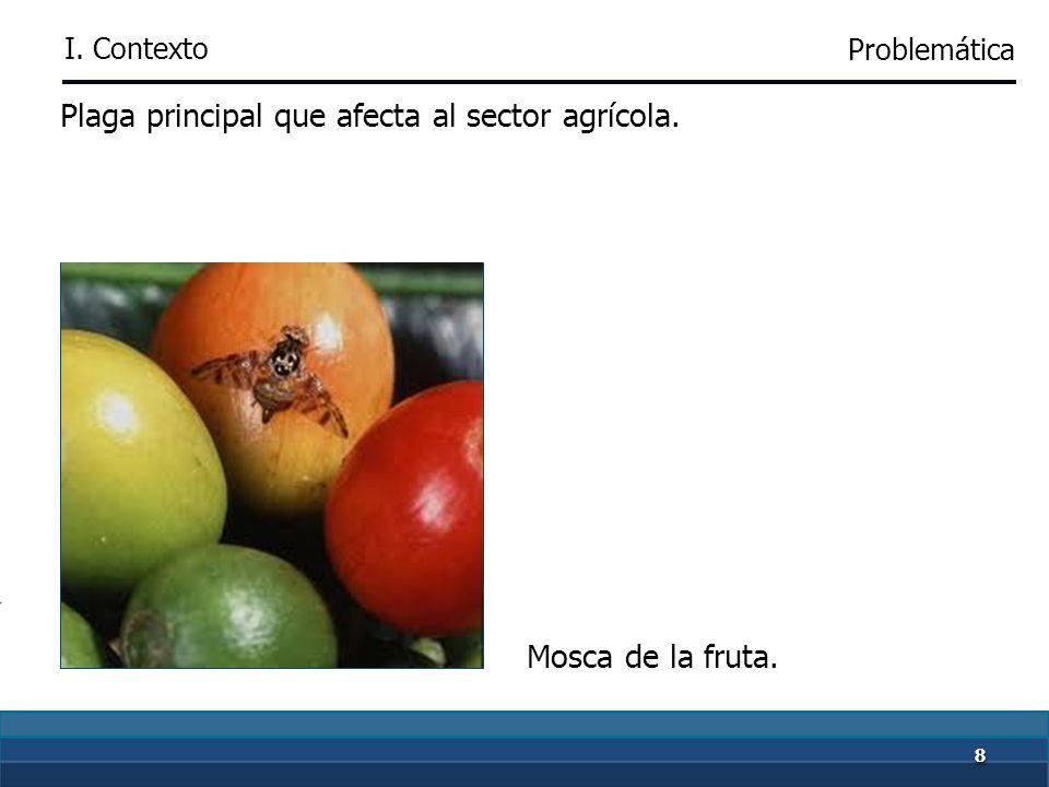 88 Plaga principal que afecta al sector agrícola. Mosca de la fruta. I. Contexto Problemática