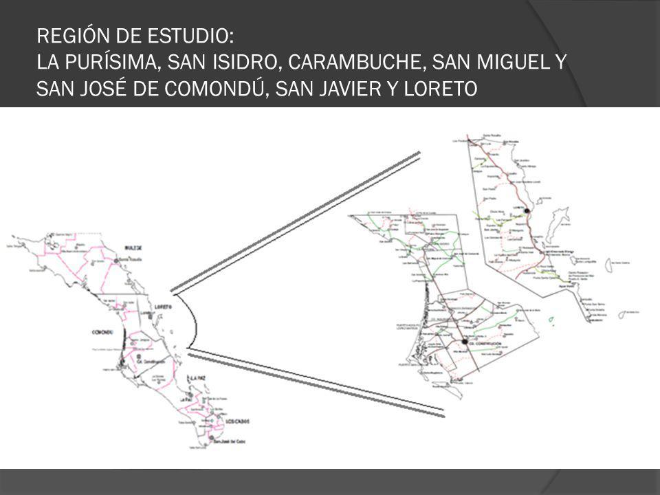 REGIÓN DE ESTUDIO: LA PURÍSIMA, SAN ISIDRO, CARAMBUCHE, SAN MIGUEL Y SAN JOSÉ DE COMONDÚ, SAN JAVIER Y LORETO