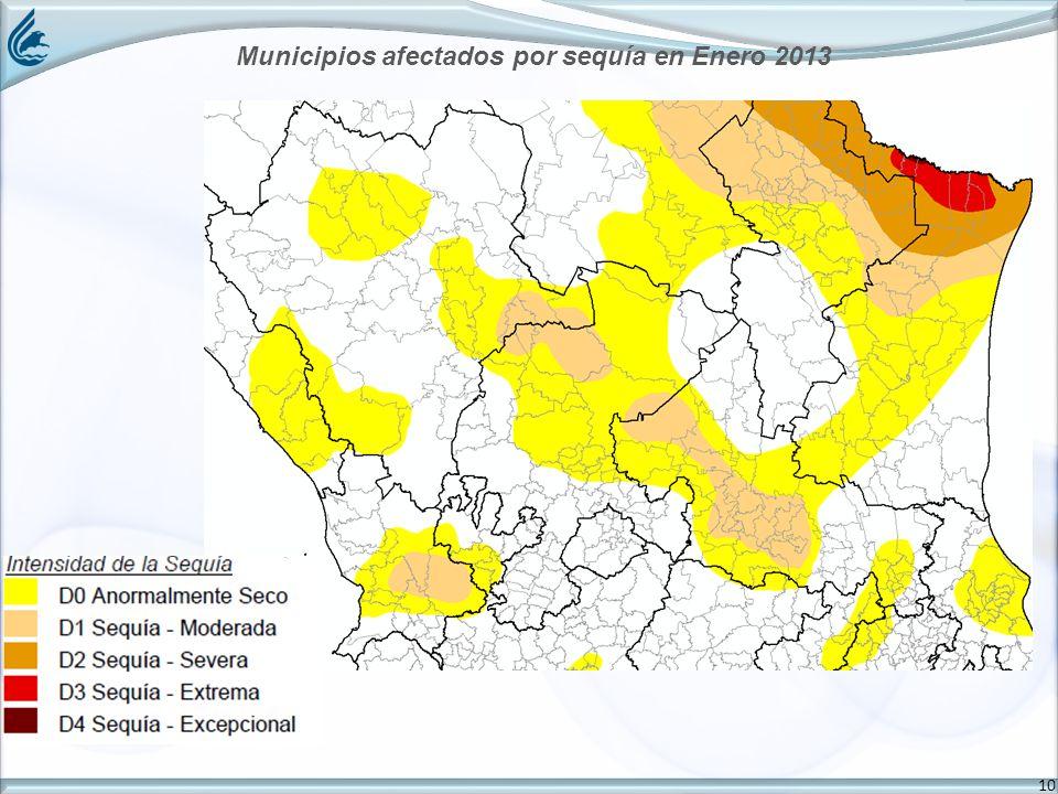 10 Municipios afectados por sequía en Enero 2013