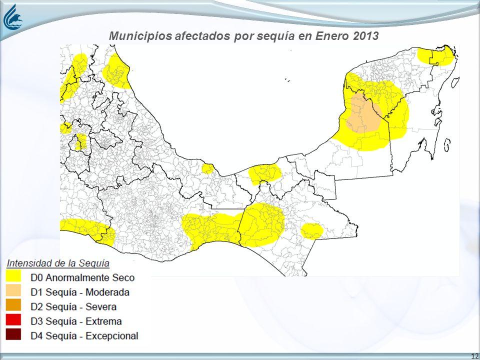 12 Municipios afectados por sequía en Enero 2013