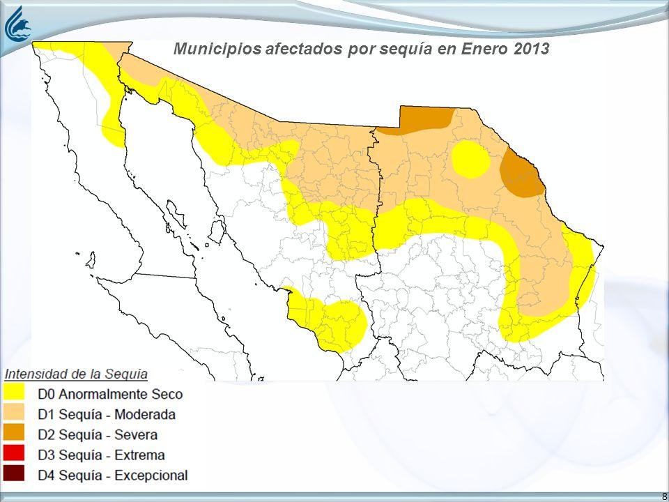 8 Municipios afectados por sequía en Enero 2013