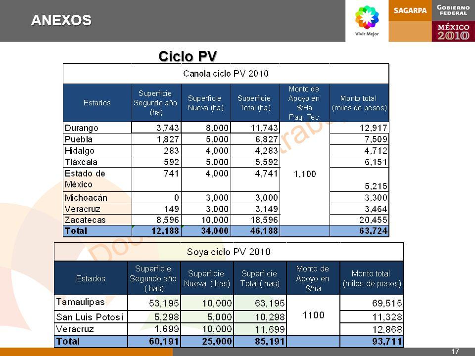 Documento de trabajo ANEXOS 17 Ciclo PV