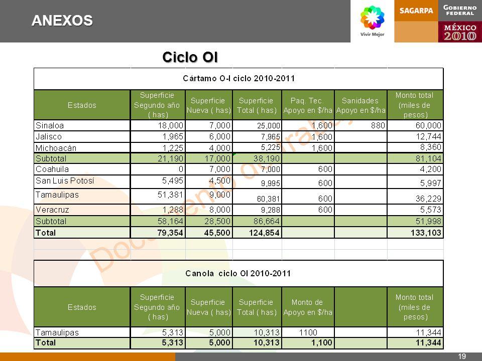 Documento de trabajo ANEXOS 19 Ciclo OI