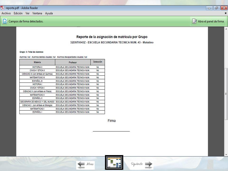 Reporte de la asignación de matrícula (Descarga en Adobe)