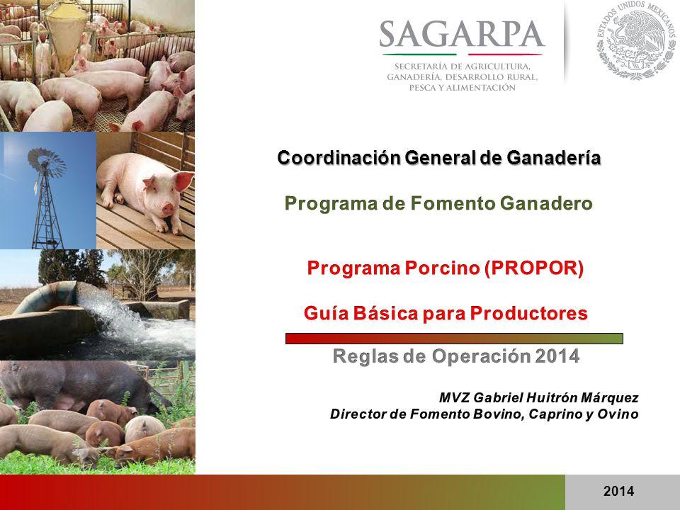 2 Programa Porcino (PROPOR) ¿ A QUIÉN APOYA EL PROPOR .
