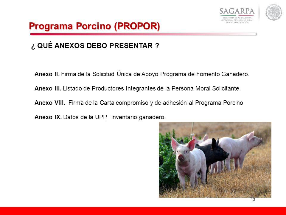 13 Programa Porcino (PROPOR) Anexo II. Firma de la Solicitud Única de Apoyo Programa de Fomento Ganadero. Anexo III. Listado de Productores Integrante