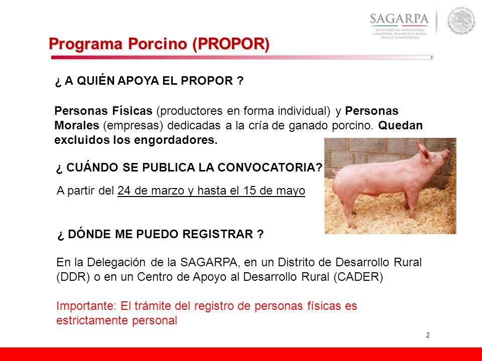2 Programa Porcino (PROPOR) ¿ A QUIÉN APOYA EL PROPOR ? Personas Físicas (productores en forma individual) y Personas Morales (empresas) dedicadas a l