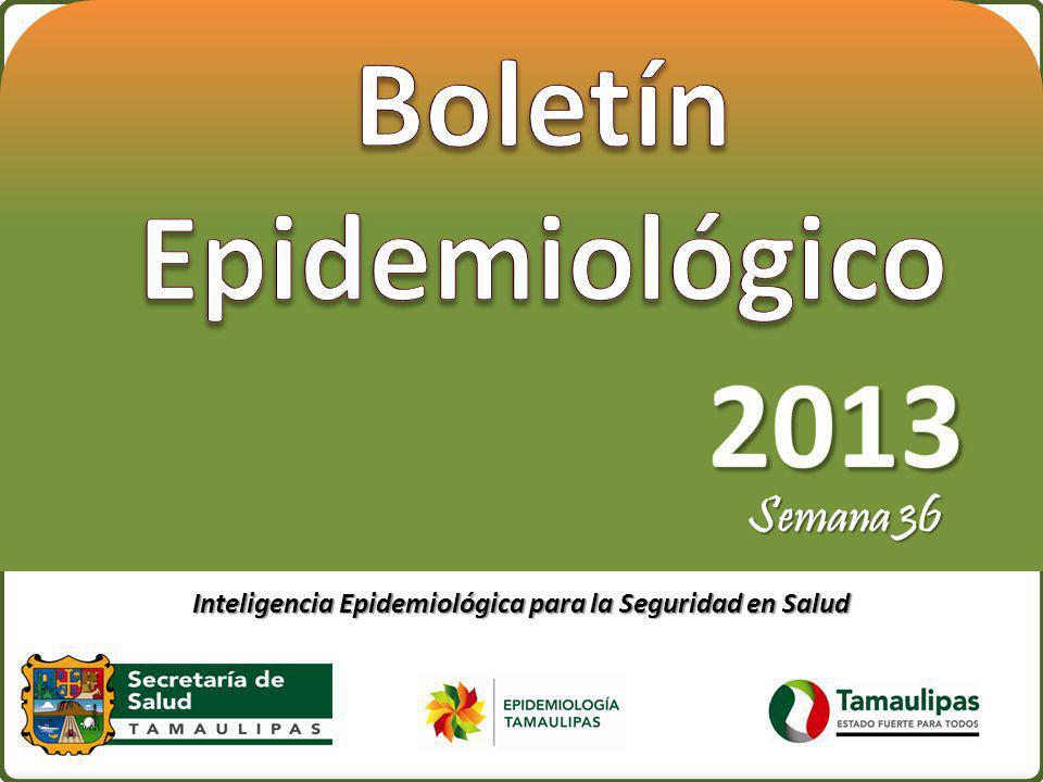 Pag.22 Índice Endémico de Hepatitis Tamaulipas 2013*.