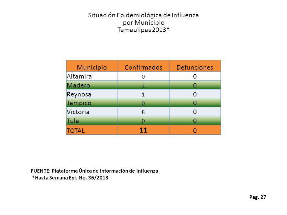 Pag. 27 Situación Epidemiológica de Influenza por Municipio Tamaulipas 2013* FUENTE: Plataforma Única de Información de Influenza *Hasta Semana Epi. N