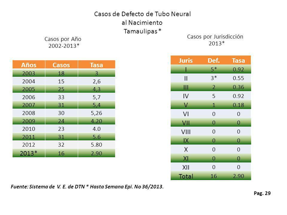 Pag. 29 Casos por Jurisdicción 2013* Casos de Defecto de Tubo Neural al Nacimiento Tamaulipas * Casos por Año 2002-2013* Fuente: Sistema de V. E. de D
