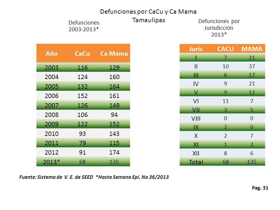 Pag. 31 Defunciones por CaCu y Ca Mama Tamaulipas Defunciones 2003-2013* Defunciones por Jurisdicción 2013* Fuente: Sistema de V. E. de SEED *Hasta Se