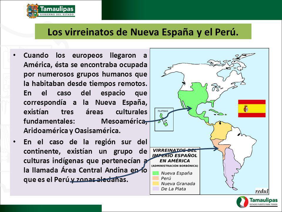 Dada la importancia política, cultural, económica y demográfica de Mesoamérica y el área Central Andina, los españoles fundaron dos virreinatos, es decir dos prolongaciones de los reinos hispánicos en el Nuevo Mundo.