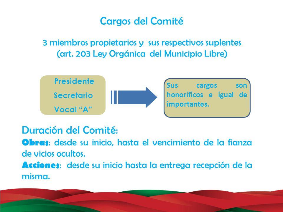 Duración del Comité: Obras : desde su inicio, hasta el vencimiento de la fianza de vicios ocultos. Acciones : desde su inicio hasta la entrega recepci