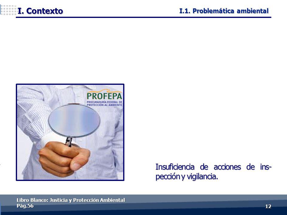 I. Contexto 1212 Insuficiencia de acciones de ins- pección y vigilancia. Libro Blanco: Justicia y Protección Ambiental Pág.56 I.1. Problemática ambien