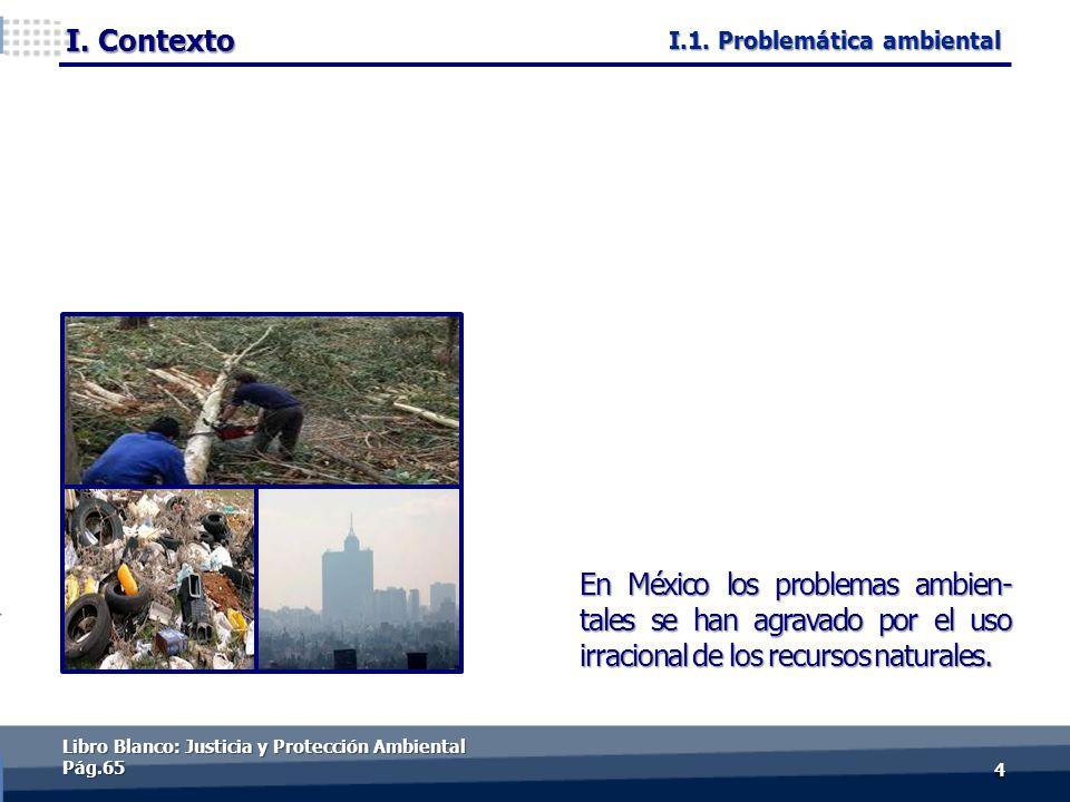 44 En México los problemas ambien- tales se han agravado por el uso irracional de los recursos naturales. I.1. Problemática ambiental Libro Blanco: Ju