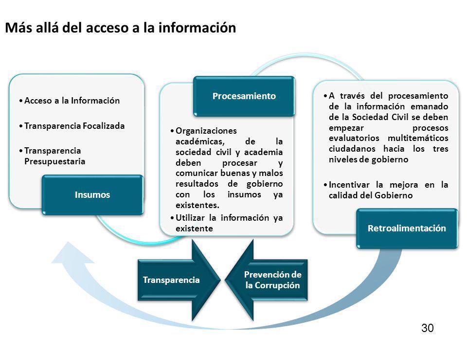 Más allá del acceso a la información 30