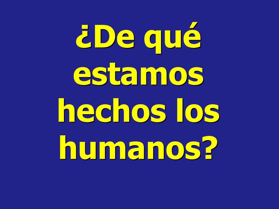 ¿De qué estamos hechos los humanos?
