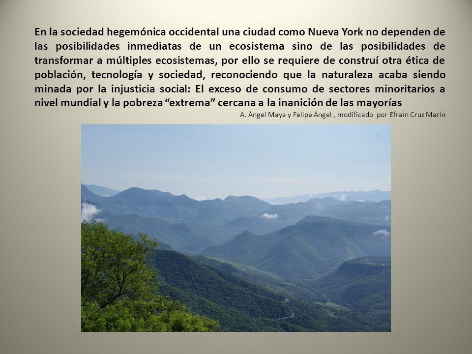 En la sociedad hegemónica occidental una ciudad como Nueva York no dependen de las posibilidades inmediatas de un ecosistema sino de las posibilidades