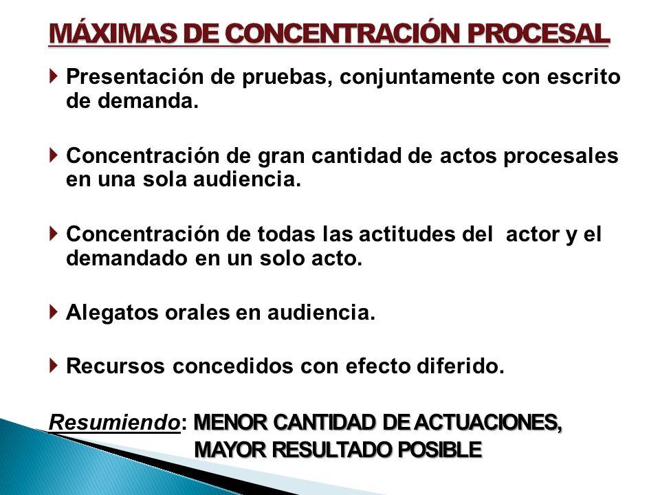 Presentación de pruebas, conjuntamente con escrito de demanda. Concentración de gran cantidad de actos procesales en una sola audiencia. Concentración