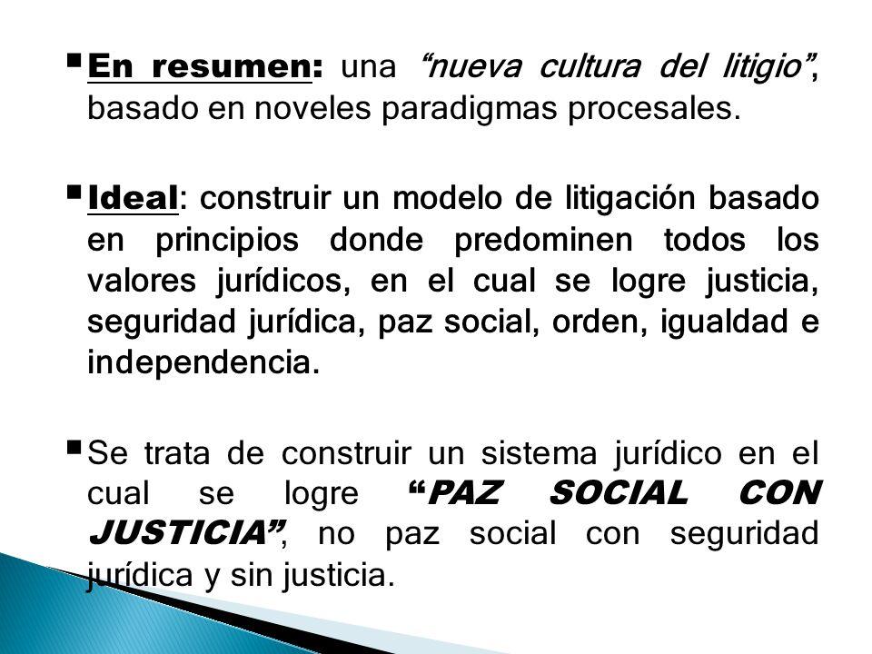 En resumen: una nueva cultura del litigio, basado en noveles paradigmas procesales. Ideal : construir un modelo de litigación basado en principios don
