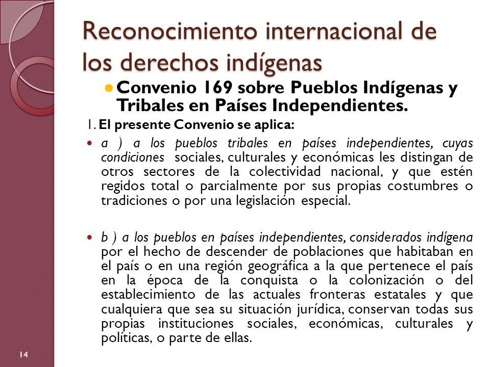 Reconocimiento internacional de los derechos indígenas Convenio 169 sobre Pueblos Indígenas y Tribales en Países Independientes. 1. El presente Conven