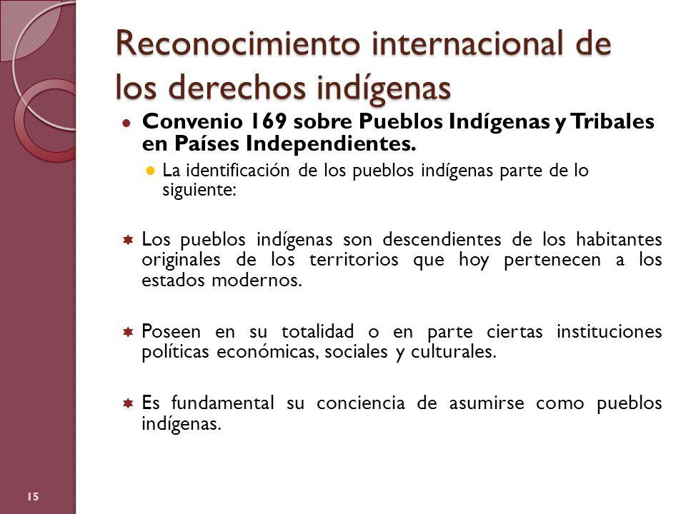 Reconocimiento internacional de los derechos indígenas Convenio 169 sobre Pueblos Indígenas y Tribales en Países Independientes. La identificación de