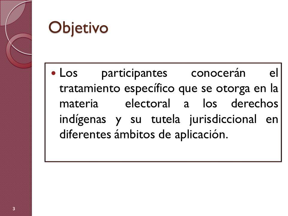 Objetivo Los participantes conocerán el tratamiento específico que se otorga en la materia electoral a los derechos indígenas y su tutela jurisdiccion