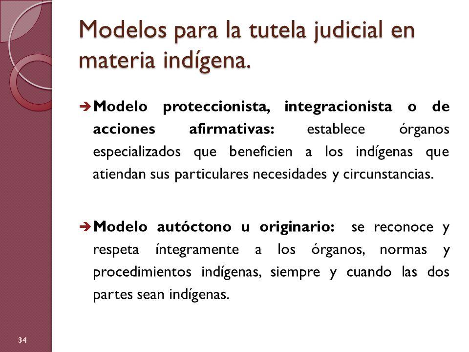 Modelos para la tutela judicial en materia indígena. Modelo proteccionista, integracionista o de acciones afirmativas: establece órganos especializado