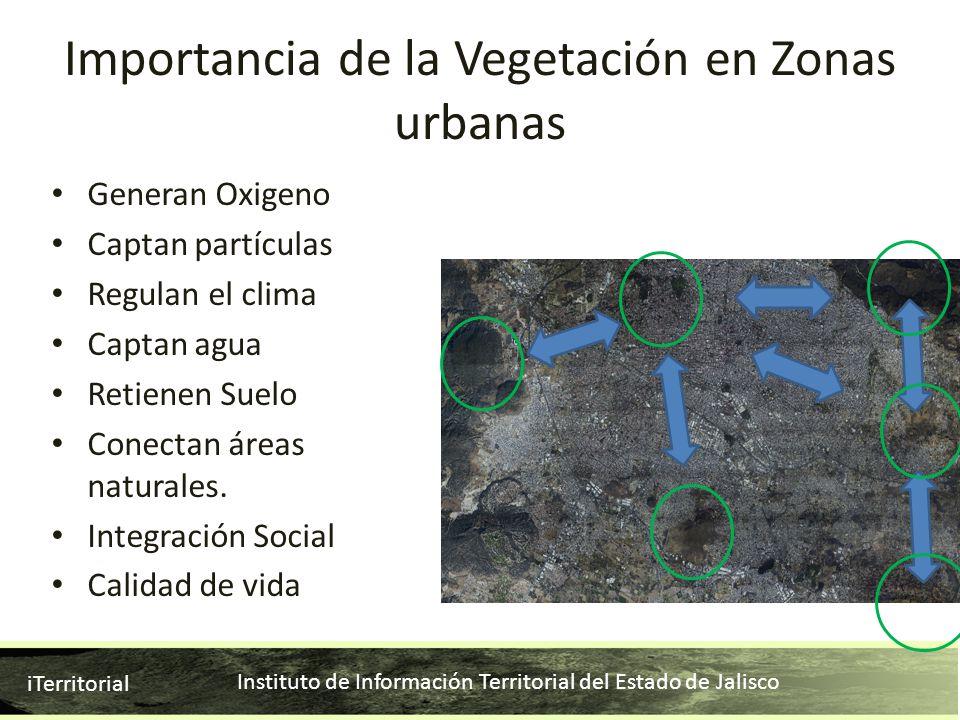 Instituto de Información Territorial del Estado de Jalisco iTerritorial Generan Oxigeno Captan partículas Regulan el clima Captan agua Retienen Suelo