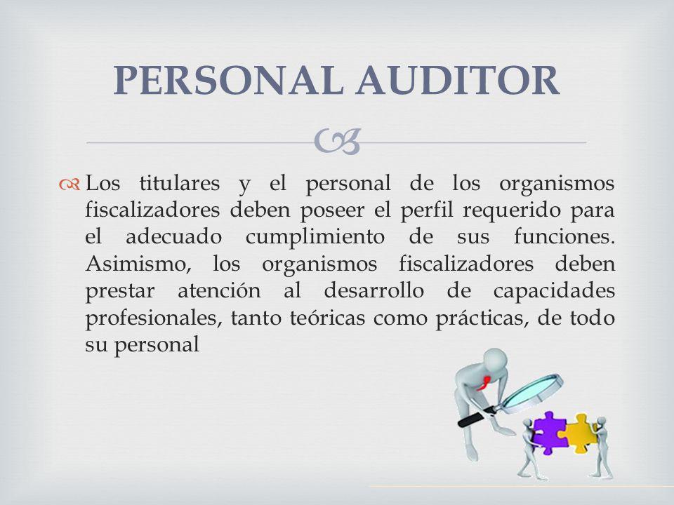 Los titulares y el personal de los organismos fiscalizadores deben poseer el perfil requerido para el adecuado cumplimiento de sus funciones. Asimismo