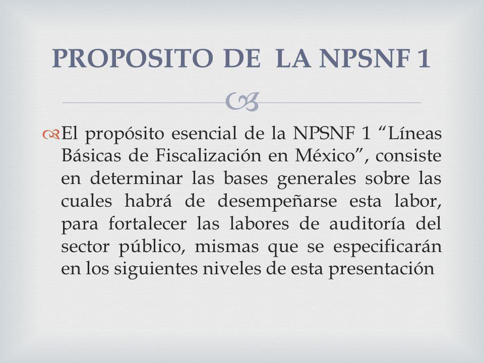 El propósito esencial de la NPSNF 1 Líneas Básicas de Fiscalización en México, consiste en determinar las bases generales sobre las cuales habrá de de