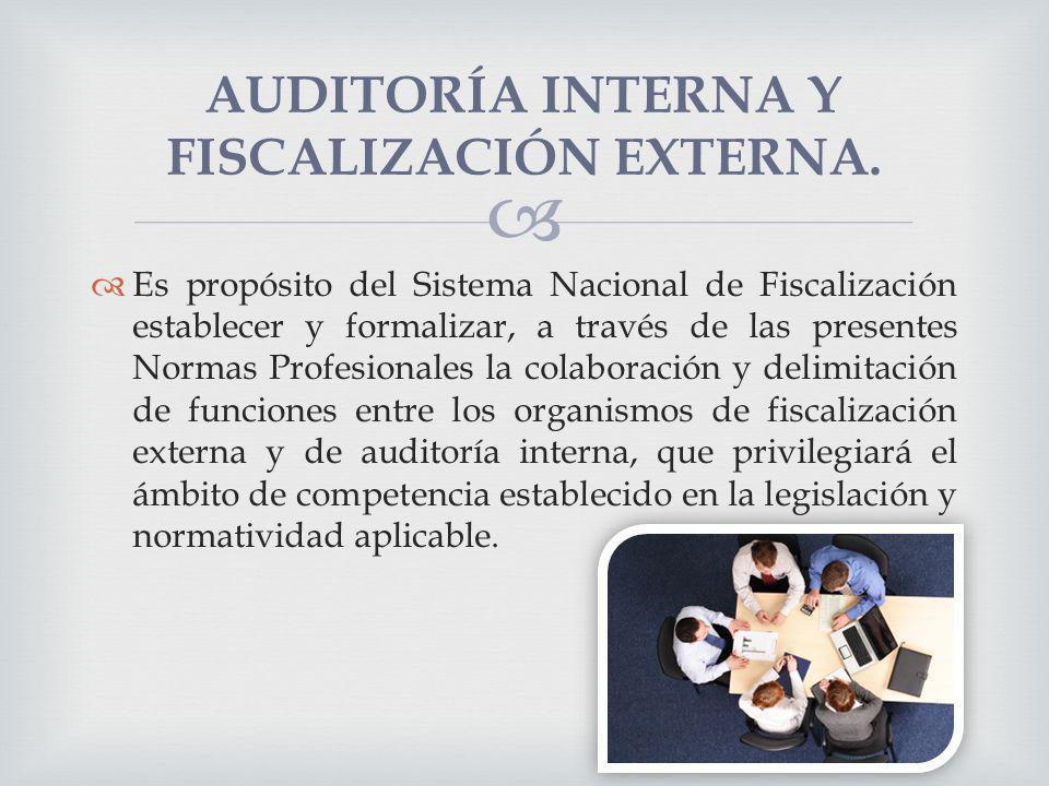 Es propósito del Sistema Nacional de Fiscalización establecer y formalizar, a través de las presentes Normas Profesionales la colaboración y delimitac