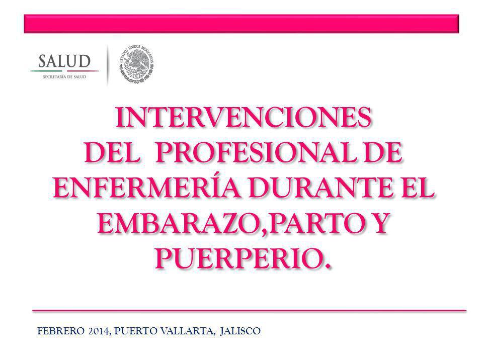 INTERVENCIONES DEL PROFESIONAL DE ENFERMERÍA DURANTE EL EMBARAZO,PARTO Y PUERPERIO.
