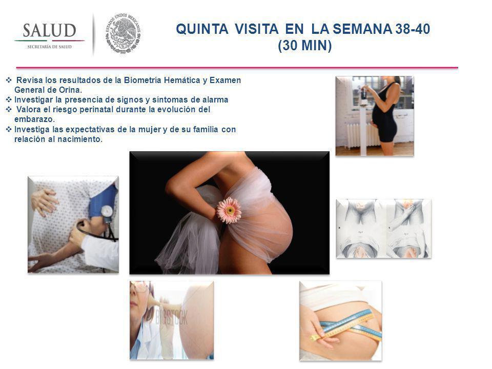CUARTA VISITA EN LA SEMANA 33-35 (20 MIN) Revisa la Biometría Hemática y el Examen General de Orina Investigar la presencia de signos y síntomas de alarma Valora el riesgo perinatal durante la evolución del embarazo.