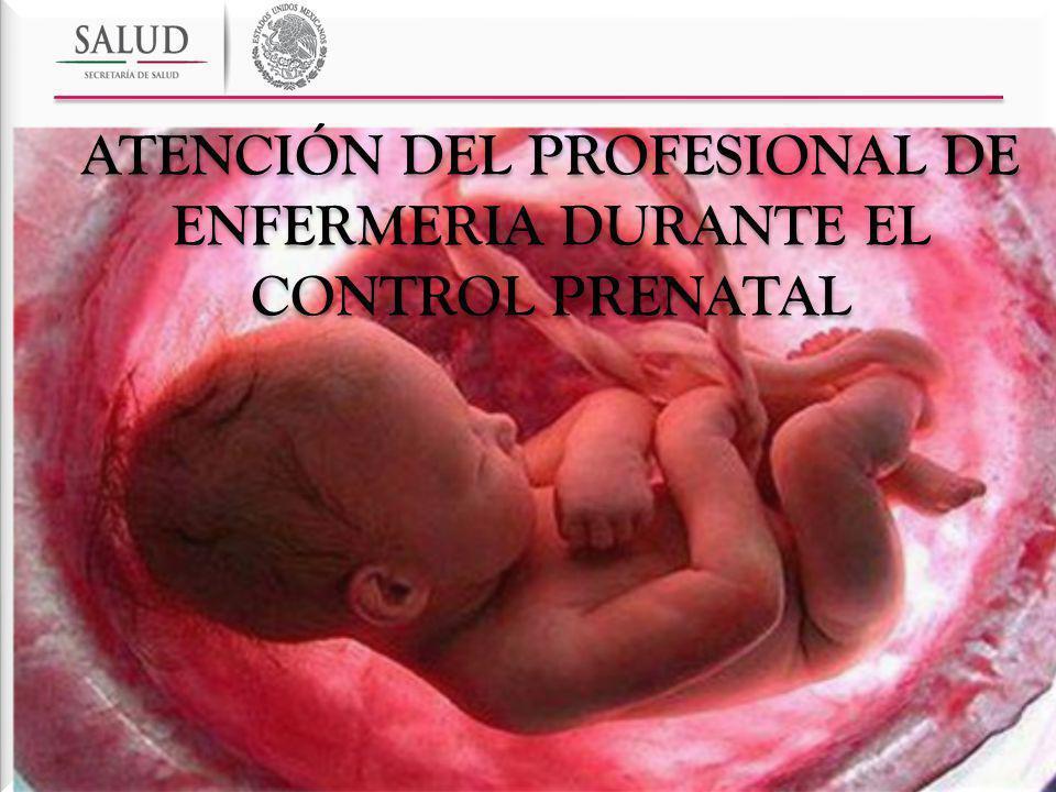 ATENCIÓN DEL PROFESIONAL DE ENFERMERIA DURANTE EL CONTROL PRENATAL