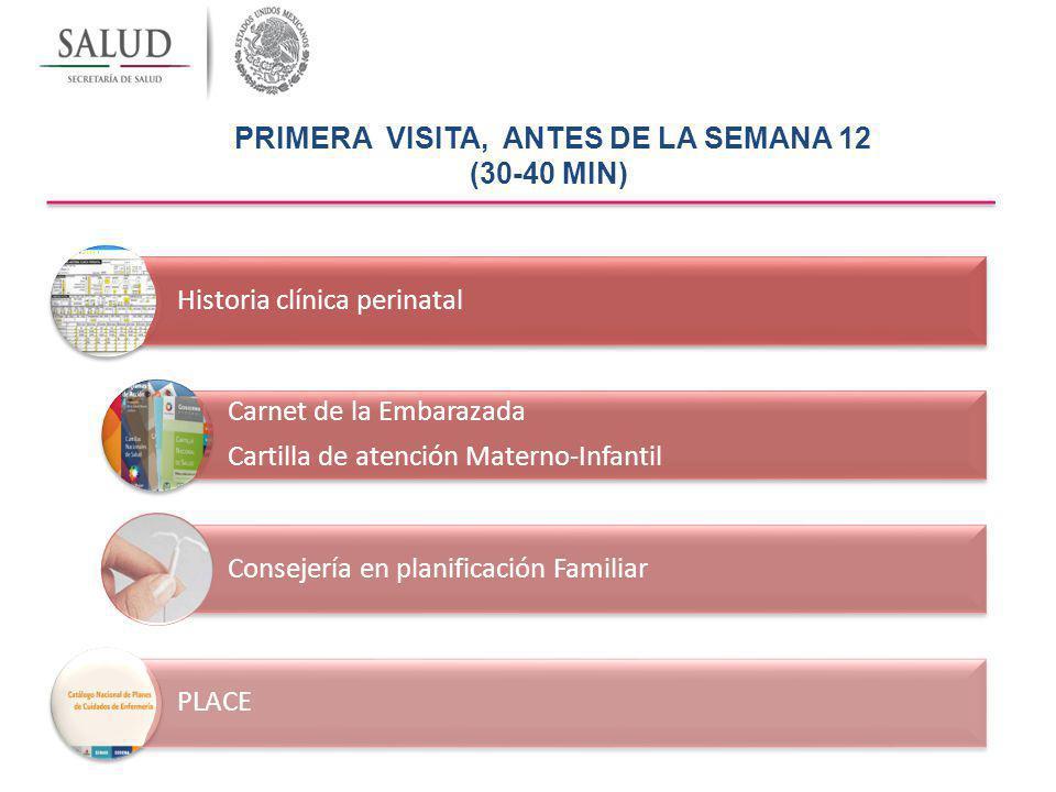 PRIMERA VISITA, ANTES DE LA SEMANA 12 (30-40 MIN)