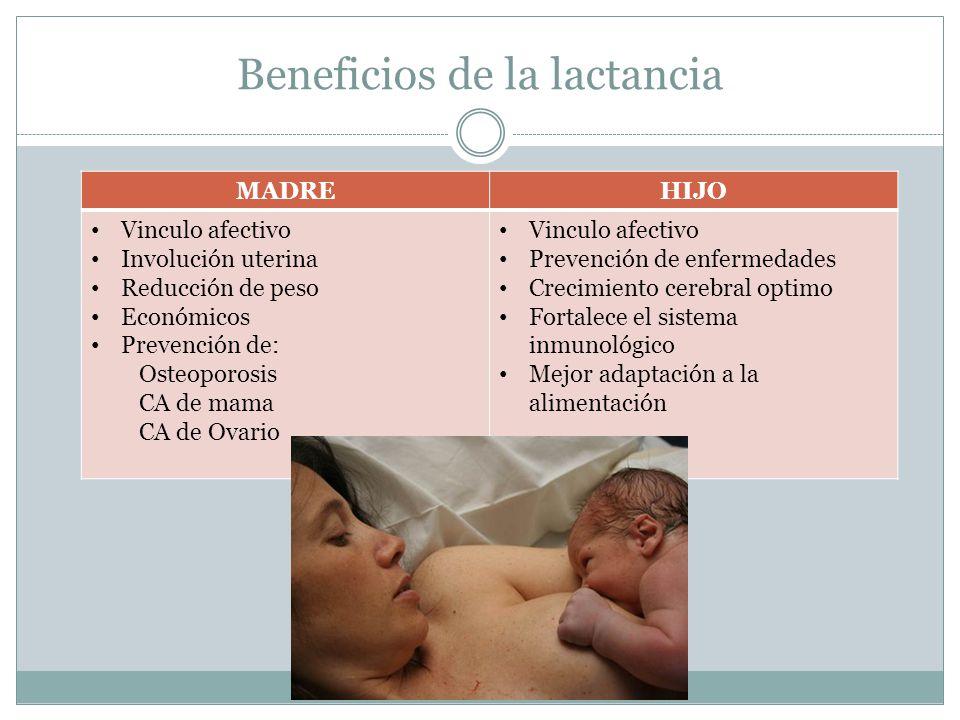 Beneficios de la lactancia MADREHIJO Vinculo afectivo Involución uterina Reducción de peso Económicos Prevención de: Osteoporosis CA de mama CA de Ova