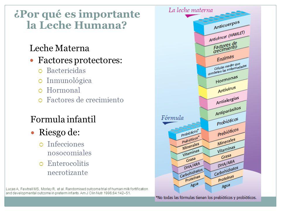 10 Pasos para una Lactancia Eficaz 3.-Informar a todas las embarazadas de los beneficios que ofrece la lactancia natural y la forma de ponerla en práctica.
