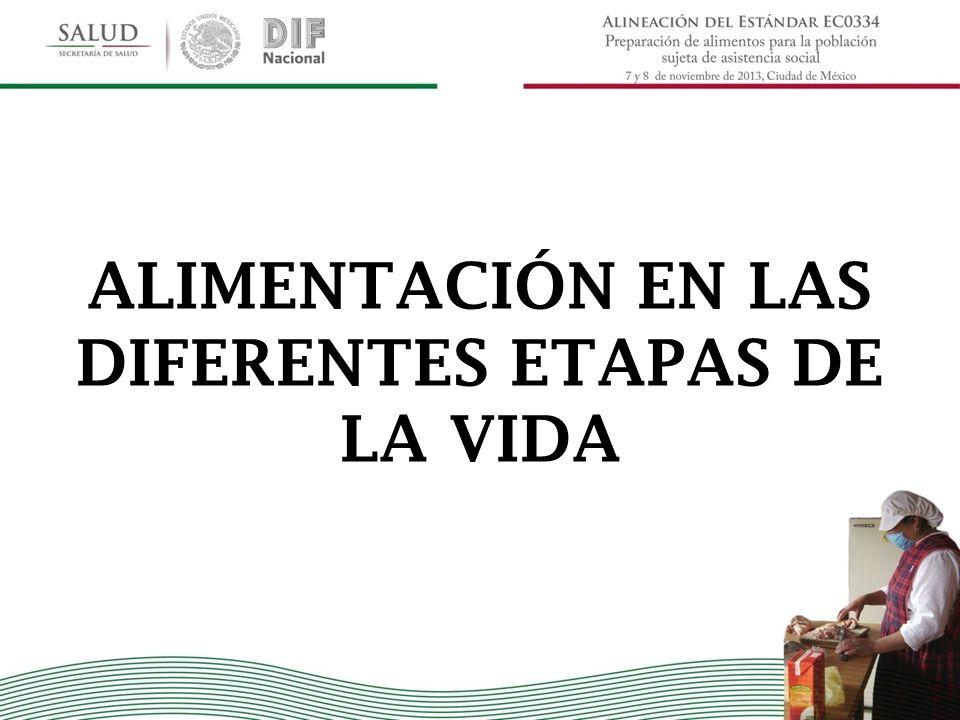 ALIMENTACIÓN EN LAS DIFERENTES ETAPAS DE LA VIDA