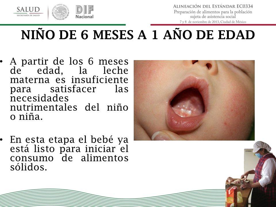 NIÑO DE 6 MESES A 1 AÑO DE EDAD A partir de los 6 meses de edad, la leche materna es insuficiente para satisfacer las necesidades nutrimentales del ni