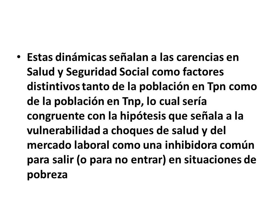 Estas dinámicas señalan a las carencias en Salud y Seguridad Social como factores distintivos tanto de la población en Tpn como de la población en Tnp