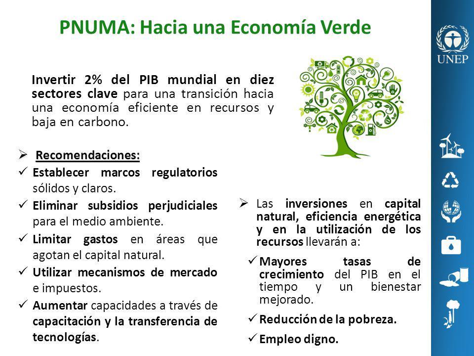 PNUMA: Hacia una Economía Verde Las inversiones en capital natural, eficiencia energética y en la utilización de los recursos llevarán a: Mayores tasa